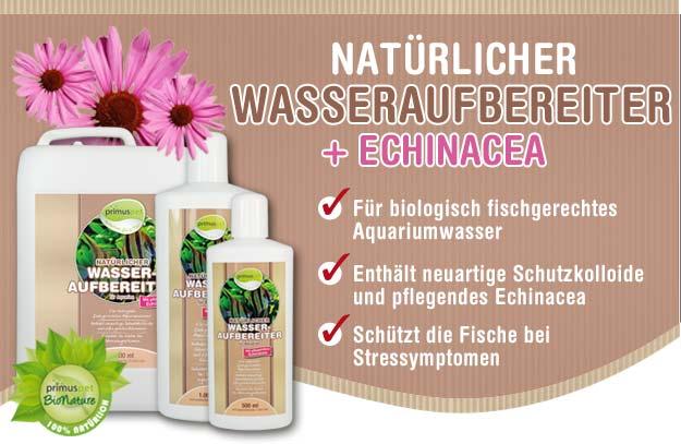 Natürlicher Wasseraufbereiter mit Echinacea